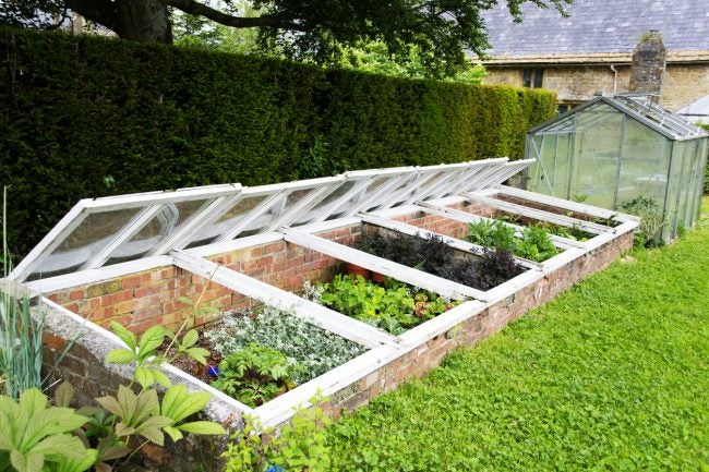 DIY Cold Frames Built from Bricks and Windows