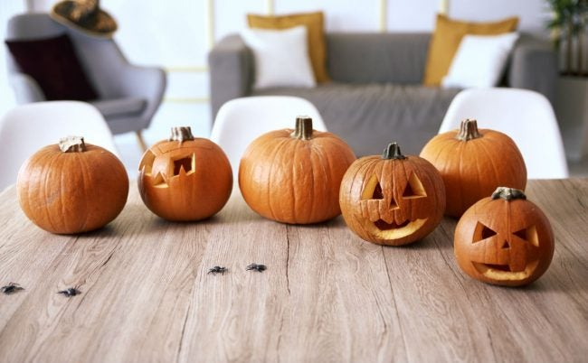How to Preserve a Carved Pumpkin? Bring It Indoors Overnight