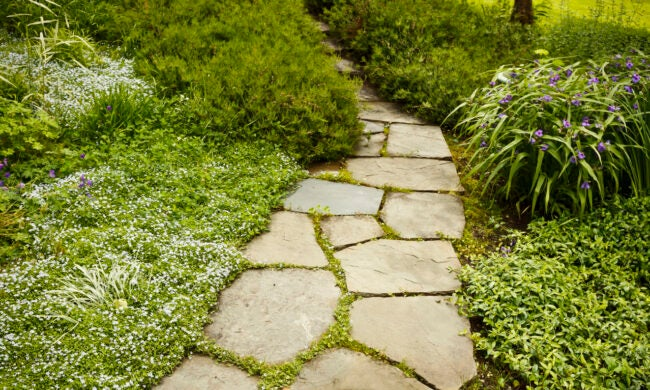How to Lay a Stone Path - Stepping Stones