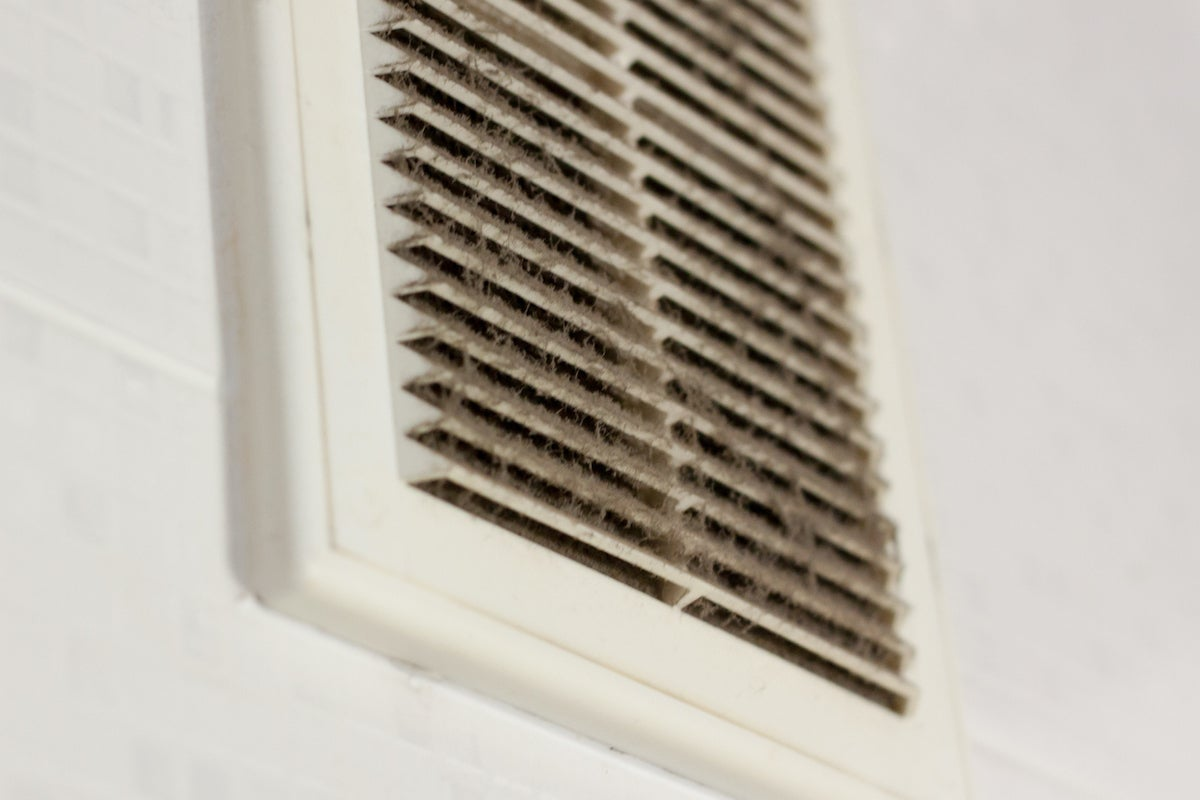 What Are the Signs of Mold in Air Vents?