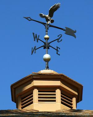 Weather Vanes - Detail