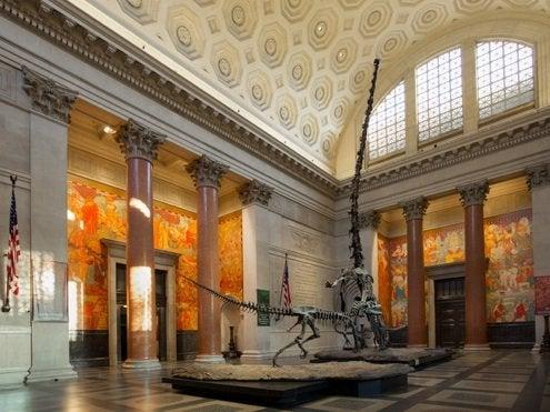Theodore Roosevelt Memorial Renovation - Main Entrance Hall