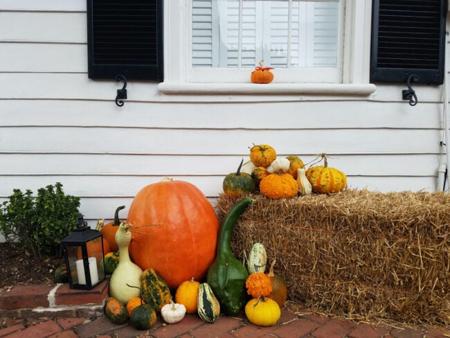 straw bale decor for curb appeal