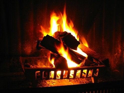 Firewood Types - Roaring Fire