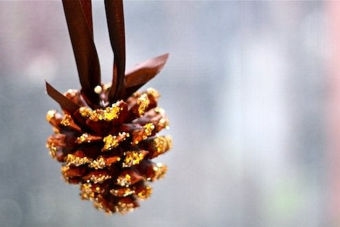 DIY Pinecone Ornaments