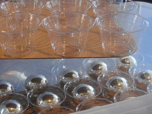 Plastic Cups for Christmas Ornament Storage