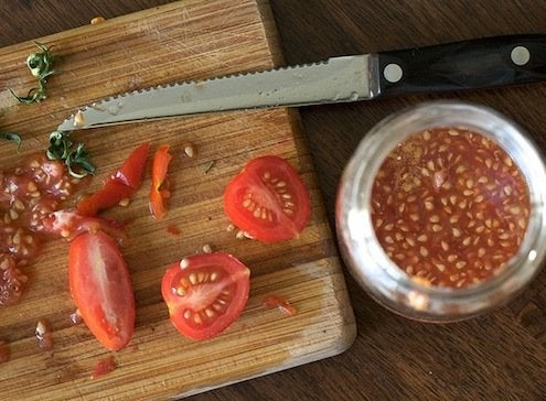 Start Tomatoes from Seed - Saving Seeds