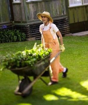 How to Choose a Wheelbarrow - Traditional Handles