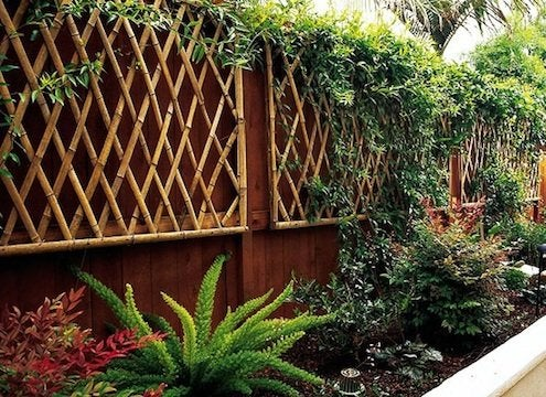 Landscaping with Bamboo - Trellis