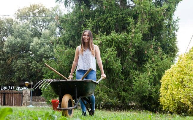 How to Choose a Wheelbarrow