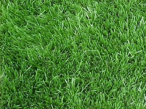 Grass Alternatives - Artificial Turf