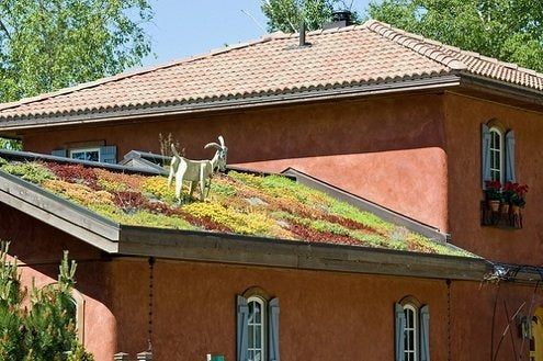 Green Roofs - Mediterranean House