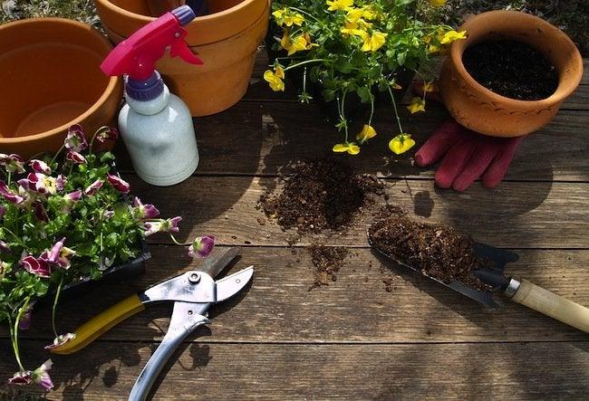 Clean-Garden-Tools