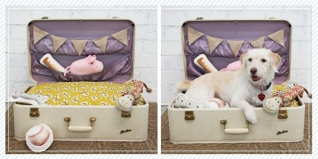 Luggage DIY Projects - Dog Bed