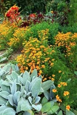 Keeping a Garden Journal - Flowerbed