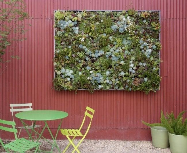 Vertical Gardens - Succulents