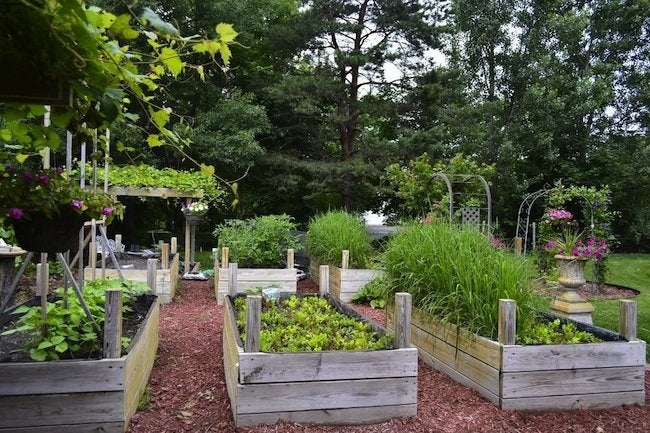 July Projects - Raised Beds