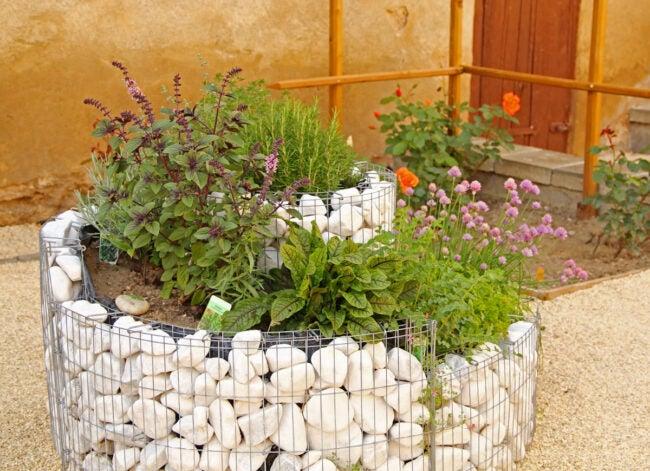 Benefits of an Herb Spiral Garden