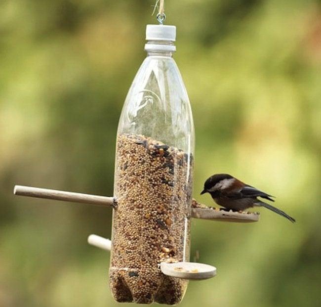 Reuse Plastic Bottle - Bird Feeder