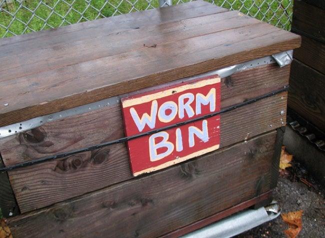 Vermiculture - DIY Worm Bin