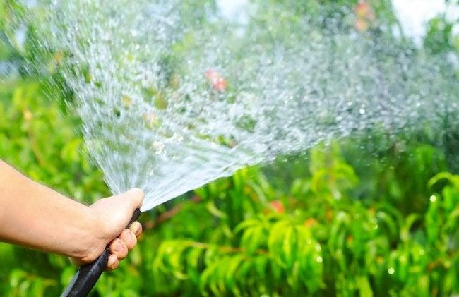 garden-hoses