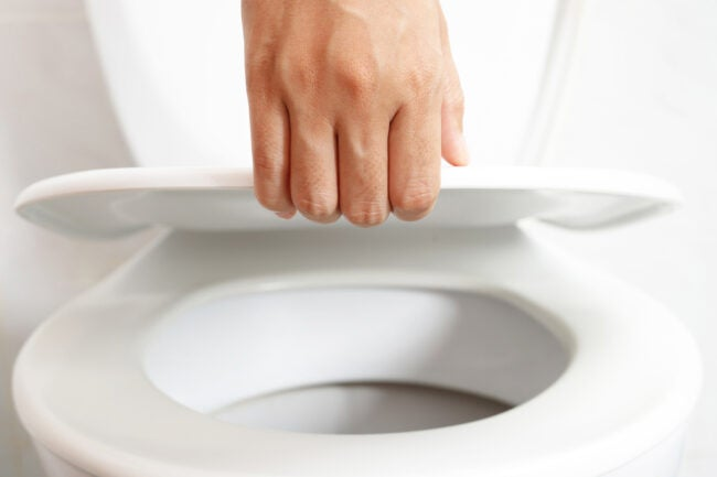 how to replace a toilet seat