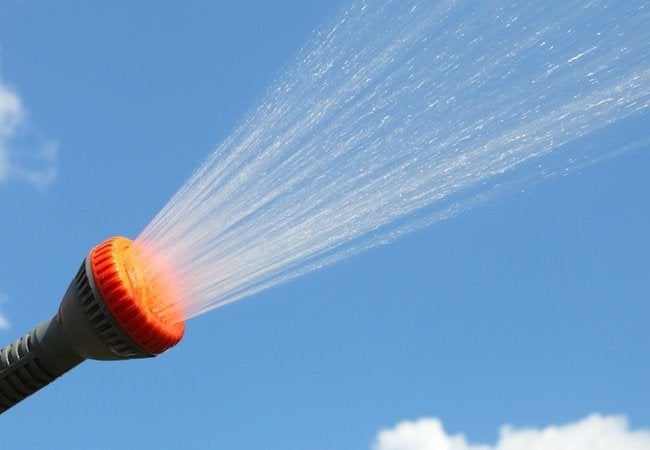 Homemade Fertilizer for Lawns - Spray