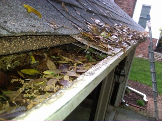 Spring Gutter Cleaning