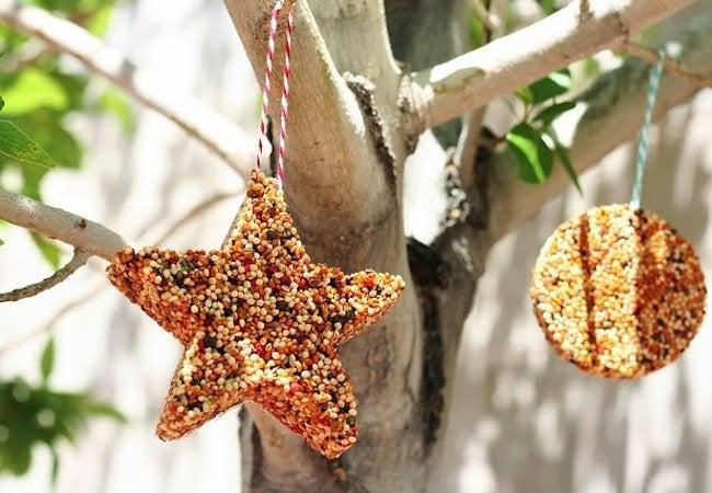 DIY Bird Feeder - Cookie Cutters