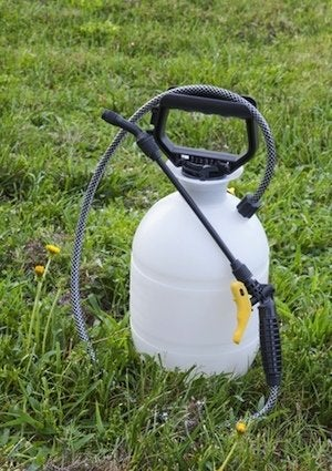 How to Get Rid of Crabgrass - Herbicide