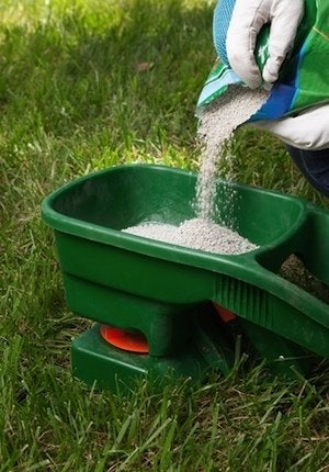 How to Fertilize Lawn in Fall - Loading