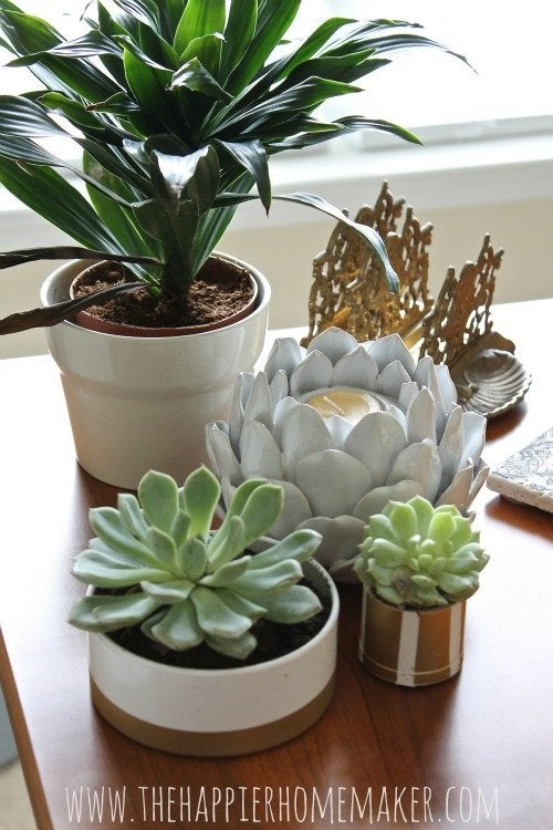 PVC pipe succulent planters finished