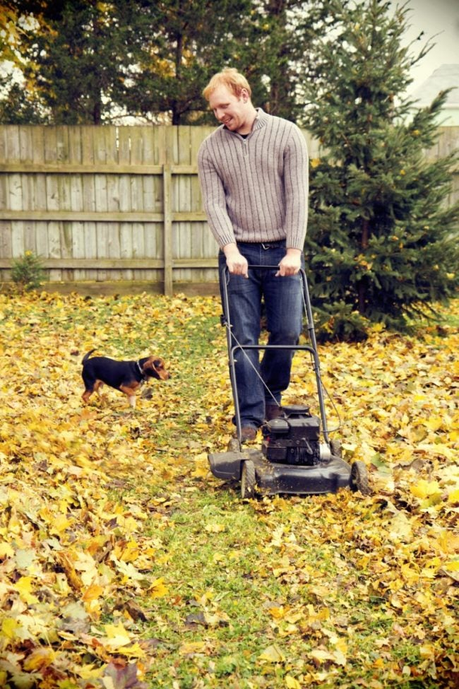 Start Mulching Leaves with a Mower