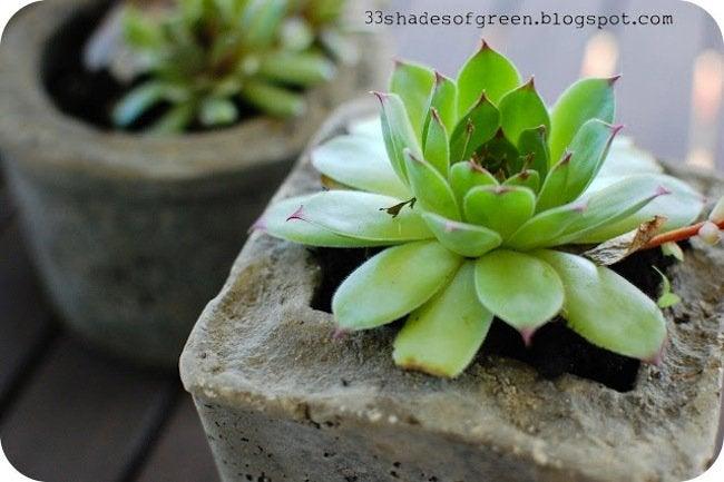 DIY Planters - hypertufa