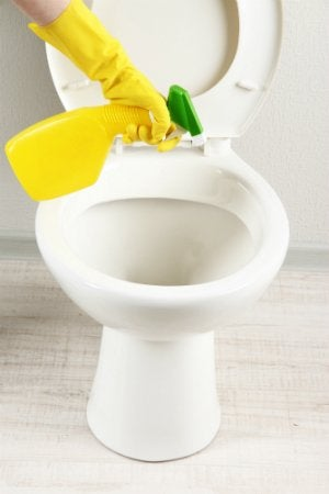 Cleaning Toilet Hard Water Stains