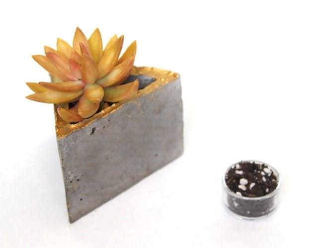 DIY Concrete Modular Planter - Plant