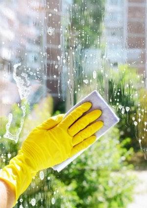 DIY Window Cleaner