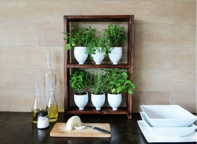 DIY Herb Garden - In Kitchen