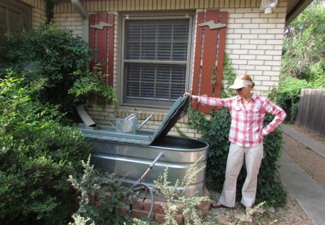 DIY Rain Barrel - Stock Tank