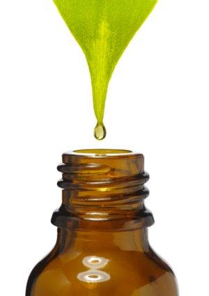 Uses for Essential Oils - Eucalyptus