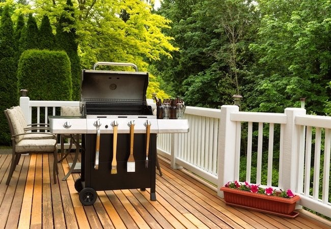 How to Keep Bugs Away from Your Barbecue - Grill Ready