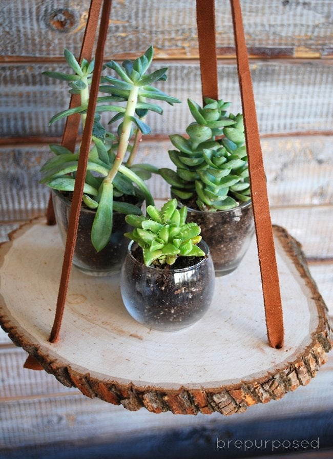 hanging plant stand