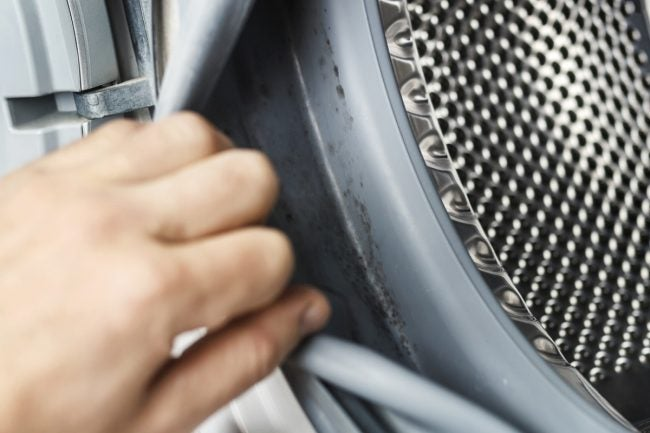 Fix a Smelly Washing Machine By Killing and Cleaning Out Mold