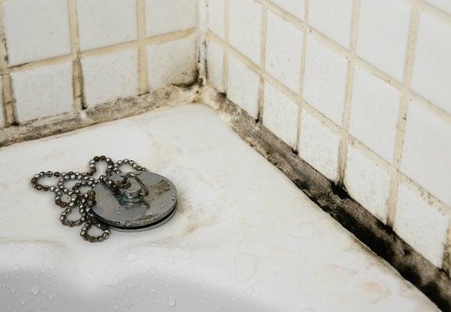 Black Mold in Bathroom - Mold Around Tub