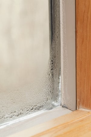 Condensation-on-windows-1