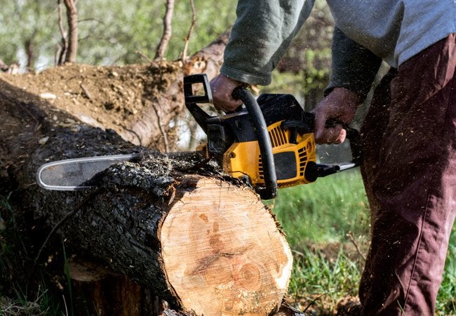 Sharpening a Chainsaw - Do's and Don'ts