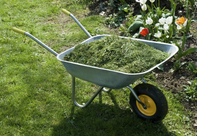 Types of Mulch - Lawn Clippings
