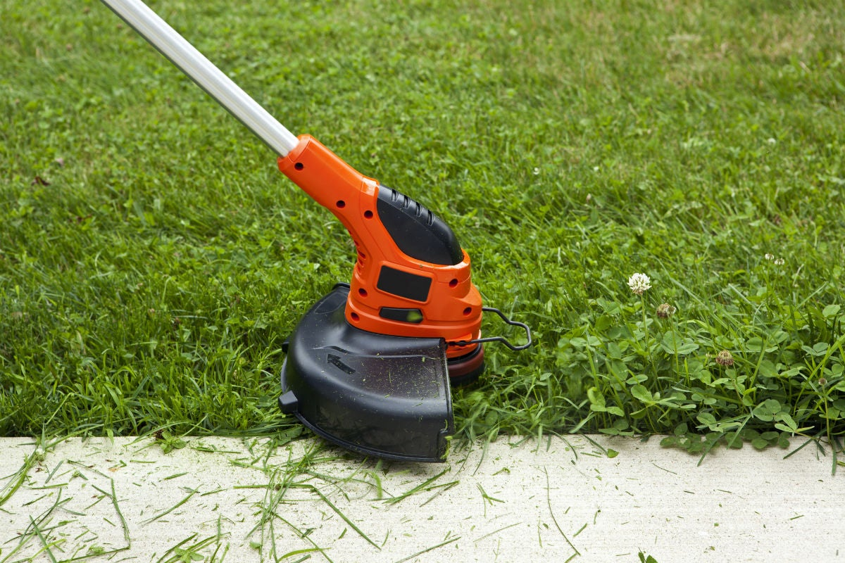 Best Weed Wacker Options