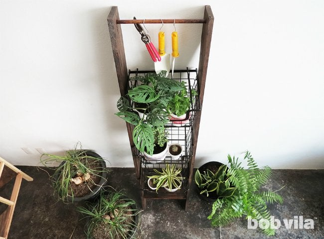 How to DIY a Ladder Plant Stand