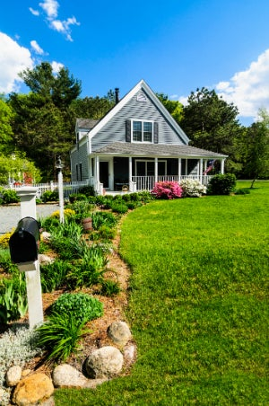 4 Types of Grass You Should Know When Landscaping